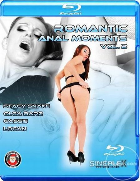 Romantic Anal Moments 2 [2013]